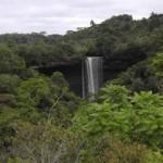 El Parque Nacional do Pau Brasil.