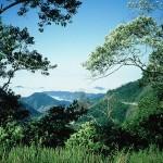 Visitar al Parque Nacional da Serra da Bocaina.