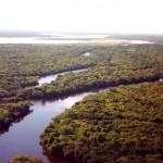 El Parque Estadual do Cantão en el estado de Tocantins